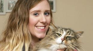 Не всякий потерявшийся кот несчастен