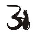Клички (имена) для кошек девочек на букву З